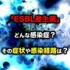 「ESBL産生菌」ってどんな感染症?その症状や感染経路は?